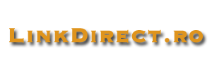 Director Web Romanesc